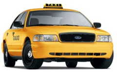Yellow Cab-New Brunswick