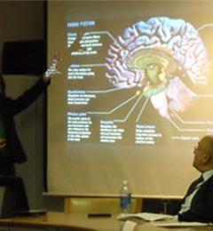 Luria Neuroscience Institute - New York, NY