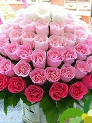 Blooming Creations Florist
