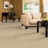 Best Steam Carpet & Tile Cleaning