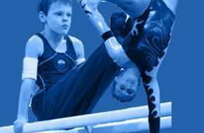 Michigan Academy of Gymnastics - Westland, MI
