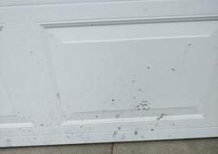 BlackJacks Sealcoating - Anoka, MN. Sealcoating splattered on garage door