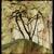 Eulippia Digital Fine Art