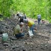 Fanily Rocks & Fossil Field Trips