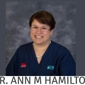 Auburn Animal Hospital - Bakersfield, CA