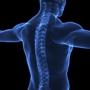 Lombardo Chiropractic Clinic