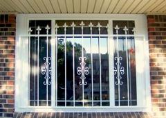 Defender Door and Window Guard - Detroit, MI