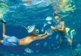 Travel With US Tours & Cruises - Jonesboro, AR. SMILE TOURS EGYPT ( Red sea  )