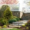 Bolton Tree & Landscaping Inc