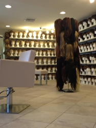 Wigs and Hair Extensions of Sarasota