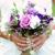 Bloomers DIY Flowers