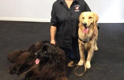 Reward That Puppy Dog Training Inc. - West Henrietta, NY