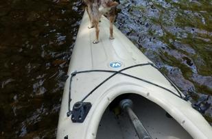Kayakers best friend
