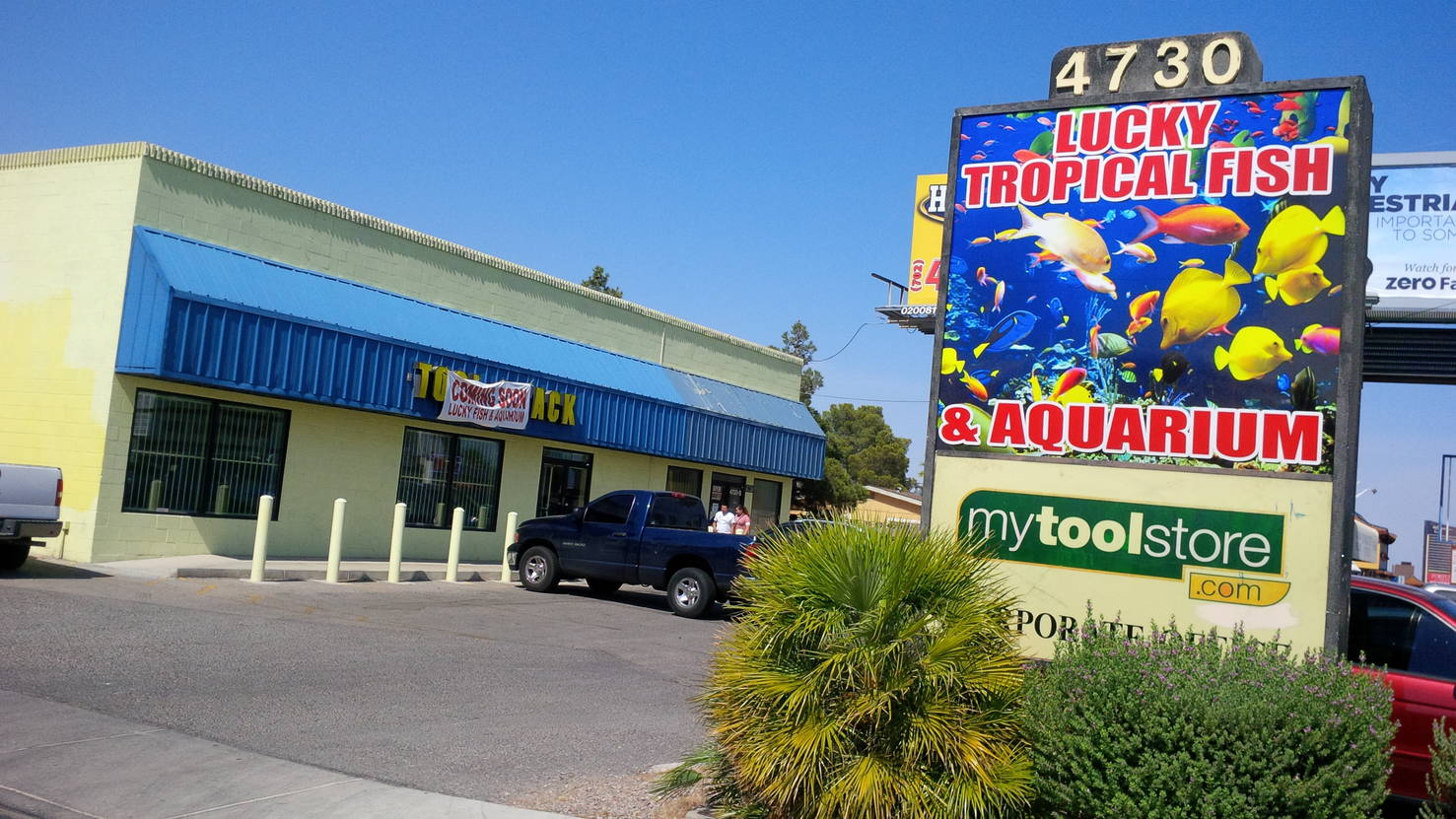 Lucky Fish Tropical Aquarium 4730 Spring Mountain Rd, Las
