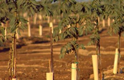 Agri-Valley Irrigation - Merced, CA
