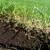 Topsoil Center
