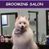 Pet Degree Dog Training Center