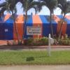 Dolphin Termite Services