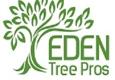 Eden Tree Pros - Gretna, NE
