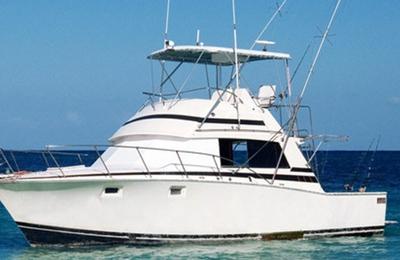 L &  S Golf Carts & Pontoon Boat Sales - Iuka, MS