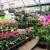 Perfect Nursery & Landscape Designs