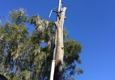 American Tree Surgeons - Green Cove Springs, FL. Log being lowered to ground