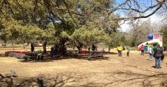 Fiesta Farm - San Antonio, TX