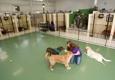 Birch Hill Kennels - Northfield, NH. Pet Kennels in Northfield, NH