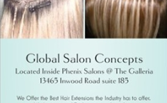 Global Salon Concept
