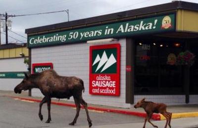 Alaska Sausage & Seafood - Anchorage, AK
