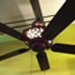Bondy's Lighting & Fans - Southgate, MI