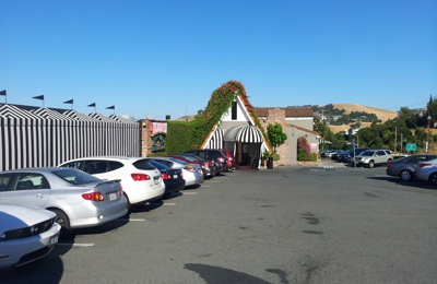 The Dead Fish - Crockett, CA