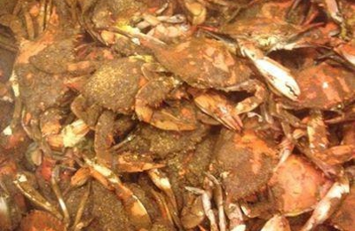Conrad's Crabs & Seafood Market - Parkville, MD