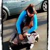 W Barrios DVM - East Hartford Animal Clinic