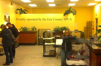 County Spca Erie - Buffalo, NY