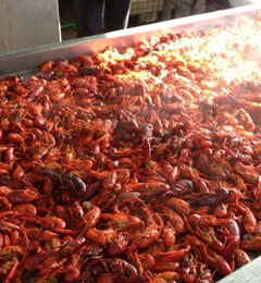 Taranto's Crawfish - Biloxi, MS