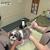 Acupet Veterinary Care