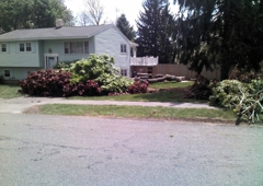 A Cut Above The Best--Tree Service - Beverly, MA
