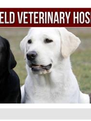 Summerfield Veterinary Hospital PLLC