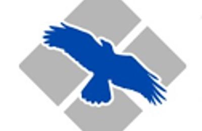 Blue Raven, Inc. - Alexandria, VA