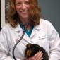Redmond-Kirkland Animal Hospital - Redmond, WA