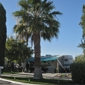 King's Row RV Park INC. - Las Vegas, NV