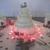 Customized Cakes by Carol