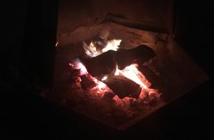 Fire pit on beach