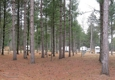 Whispering Pines - Osseo, WI