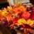 Oak Leaf Florist
