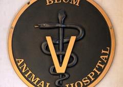 Blum Animal Hospital - Chicago, IL