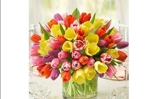 Spring Passion Tulips Bouquet