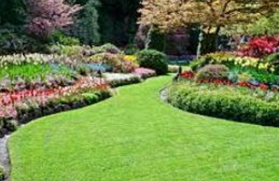 Ray's Lawn Tree & Landscaping Services - Riverside, CA