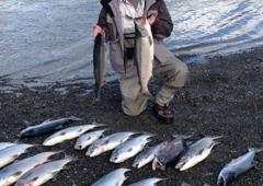 Alaska Denise Lake Lodge & Charters - Soldotna, AK